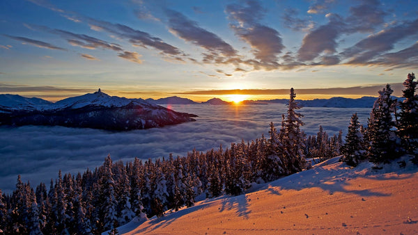 Whistler One Day Tour