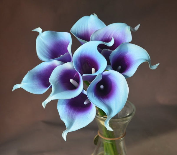 Blue and purple picasso real touch calla lily
