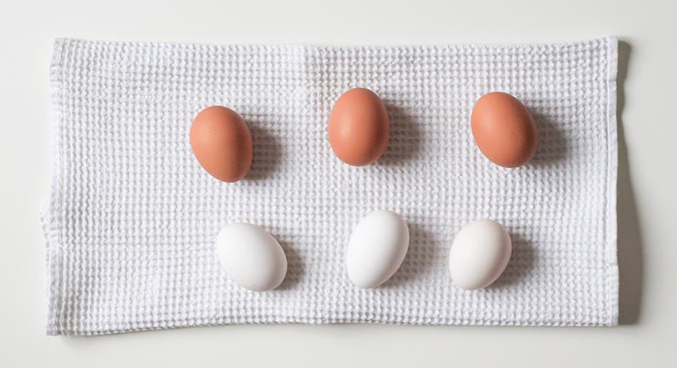Are eggs sustainable?