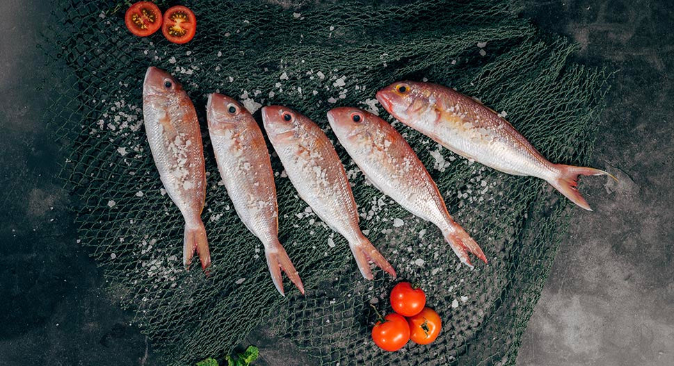 Eating oily fish helps stress