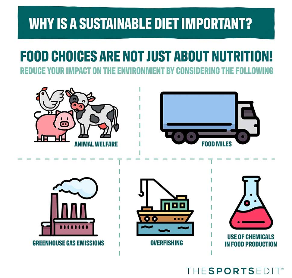 What is sustainable eating?