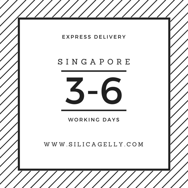 singapore-express-delivery