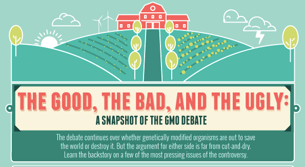 The Science and Politics of Genetically Modified Food