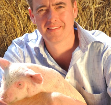 Spare a thought for the pig that provides your bacon
