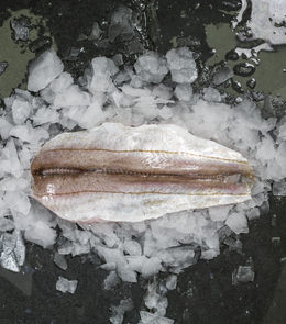 Whiting Fillet Skin On