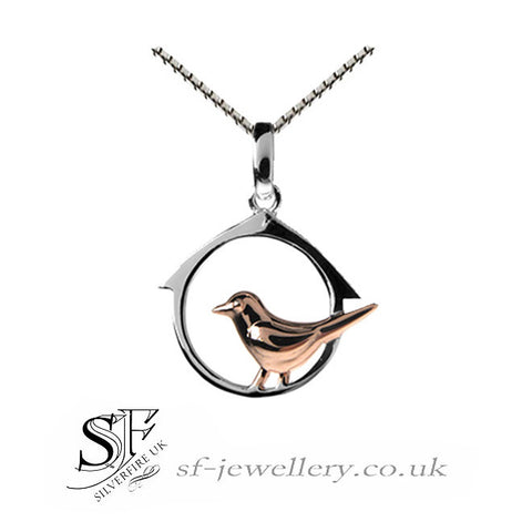 Bird jewellery in sterling silver bird necklaces bird earrings bird box pendant necklace mozeypictures Image collections