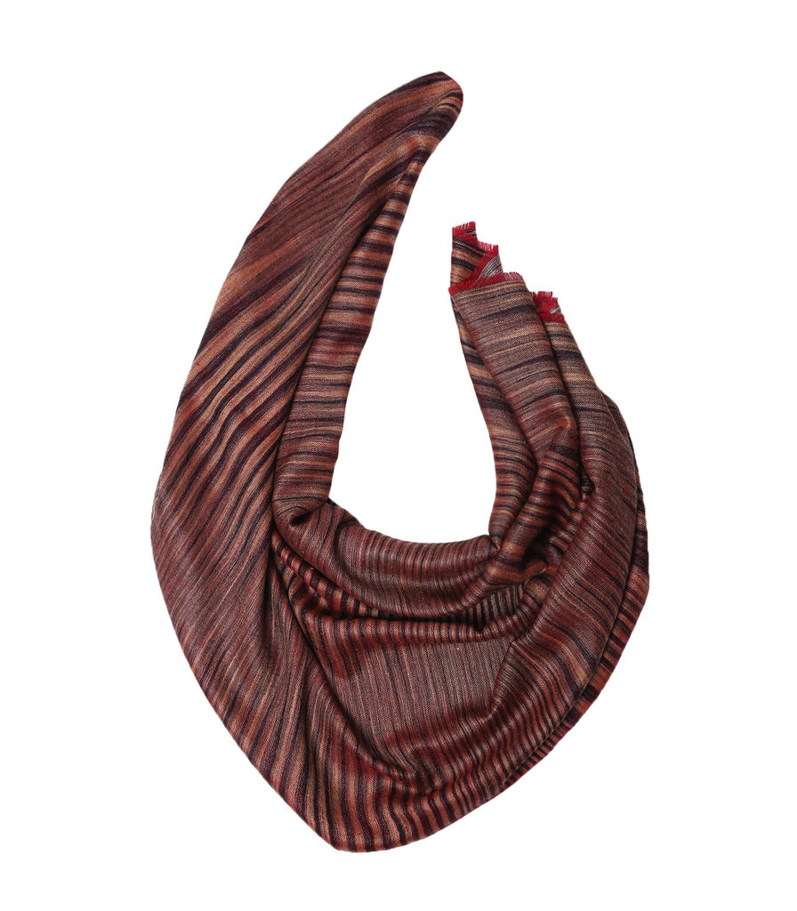 Hues of Brown Reversible Pashmina with Red Fringes