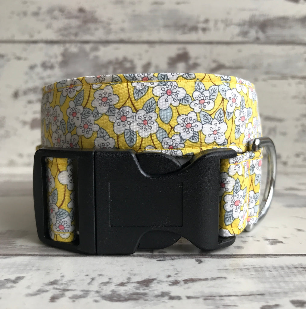 SALE - Liberty Lemon Daisies - Dog Collar