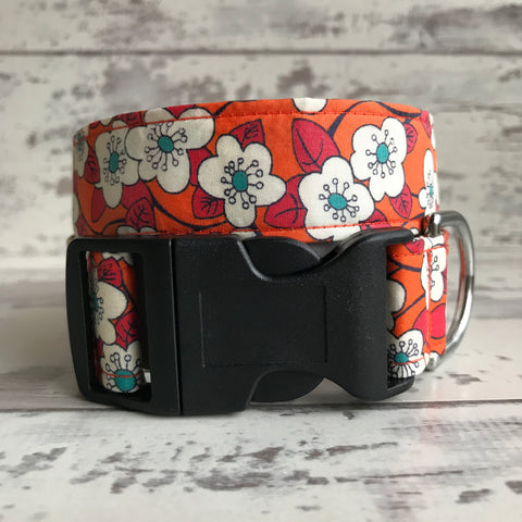 Liberty Orange Daisies - Dog Collar
