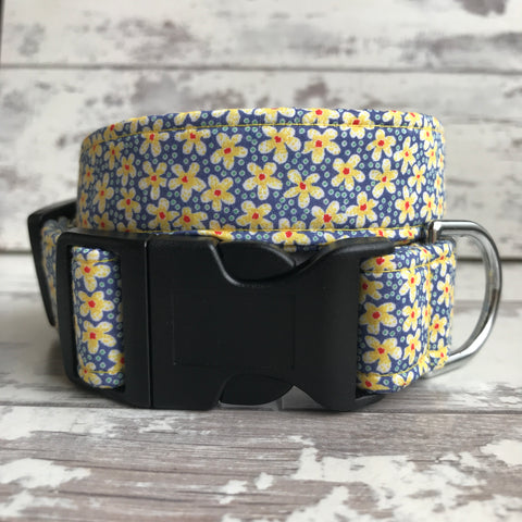 Liberty Daisies - Dog Collar
