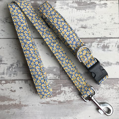 Matching Liberty Daisies Dog Collar and Lead - both in Large size