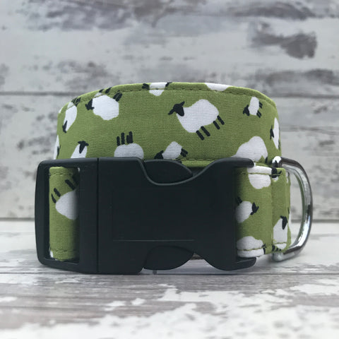 **NEW** Sheep on the Green - Dog Collar
