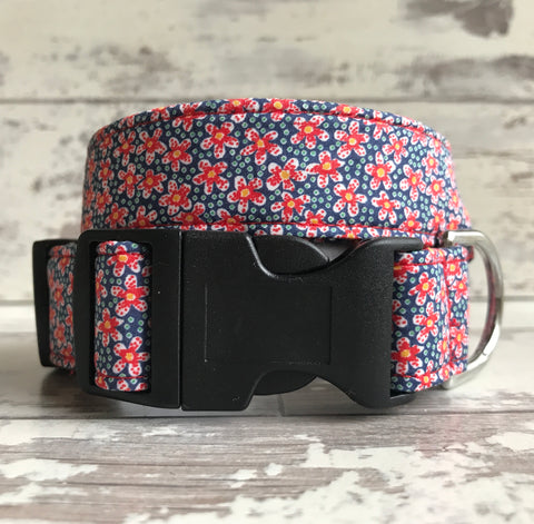 Sunrise Daisies - Dog Collar