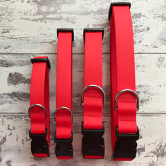 Candy Red Dirty Dog Collar