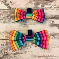 Small & Large Rainbow Stripe Bow Ties