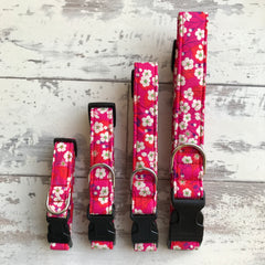 Japanese Cherry Blossom - Dog Collar