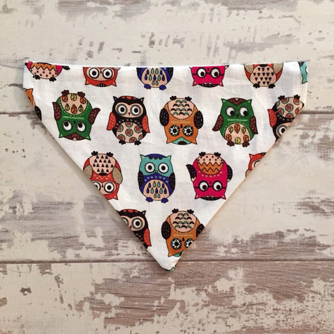 The Black Dog Company Cheeky Owl Bandana