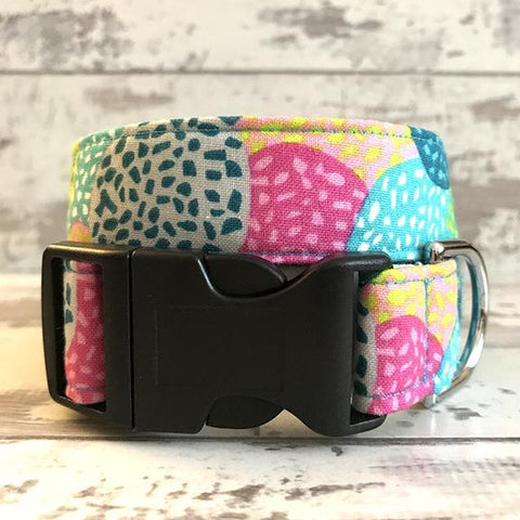 The Black Dog Company Handmade Dog Collars **NEW** Citrus Circles - Dog Collar