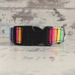 The Black Dog Company Handmade Dog Collars Small / Plastic Rainbow Stripes - Dog Collar