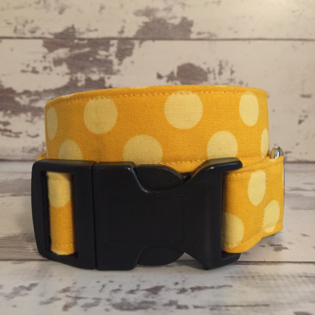 The Black Dog Company Handmade Dog Collars Sunshine Spots - Dog Collar
