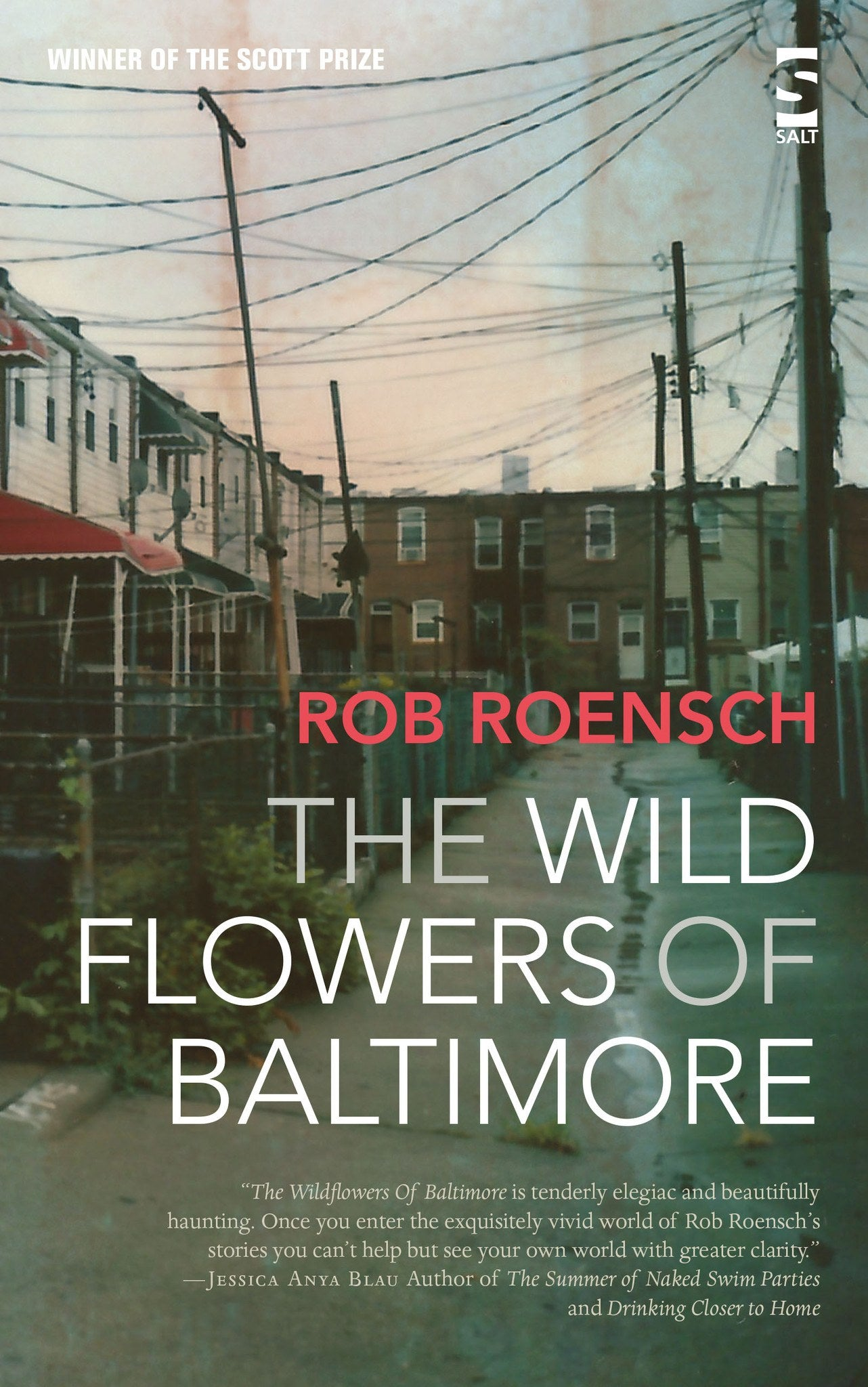 The Wildflowers Of Baltimore By Rob Roensch