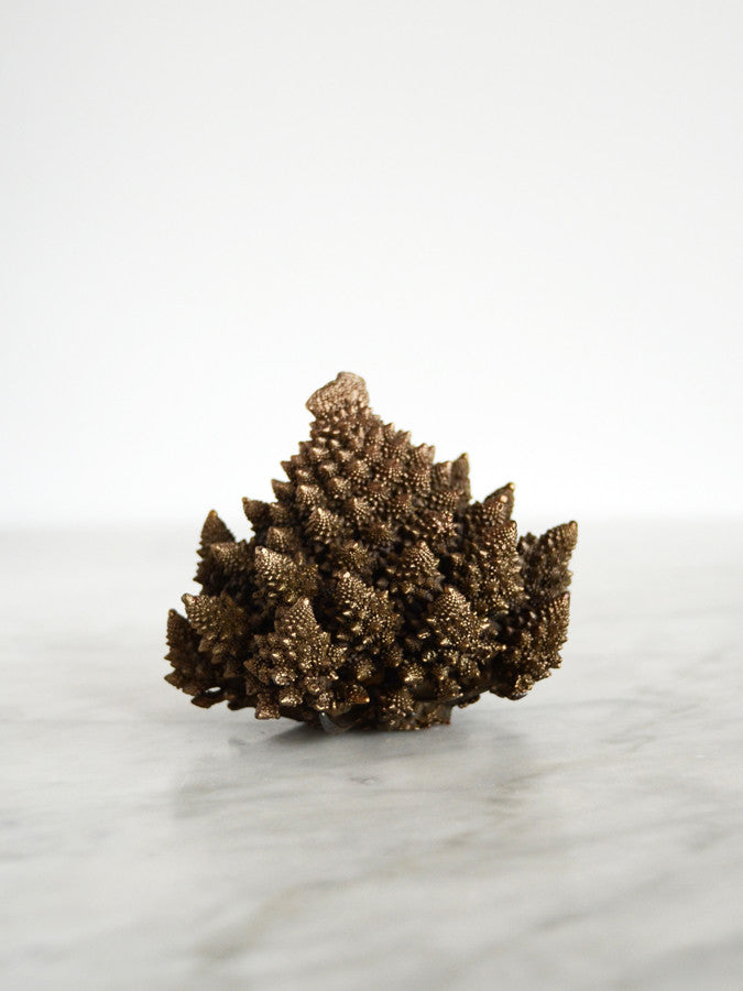 Bronze Romanesco