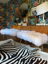 White mongolian sheepskin upholstered bench with gold hairpin legs