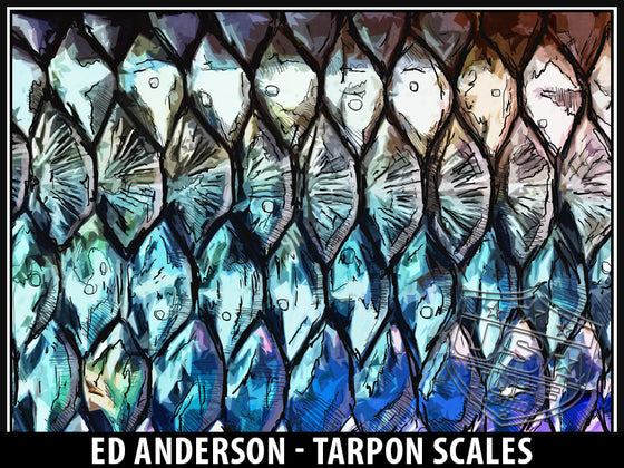 Tarpon Scales by West Mountain Drifters