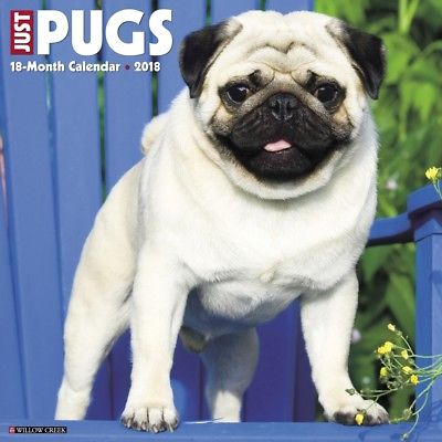 Just Pugs Wall Calendar, Pug by Willow Creek Press Willow Creek Press 1