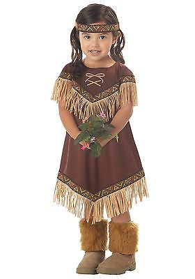 Toddler Li'l Indian Princess Costume California Costume