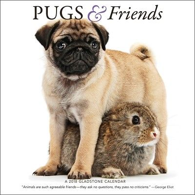 Pugs And Friends Wall Calendar, Pug by Gladstone Media Gladstone Media 1