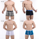 CANTANGMIN Male panties cotton boxers panties comfortable breathable men's panties underwear trunk brand shorts man boxer 365
