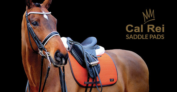 Cal Rei 3D Saddle Pads. Better for your horse.