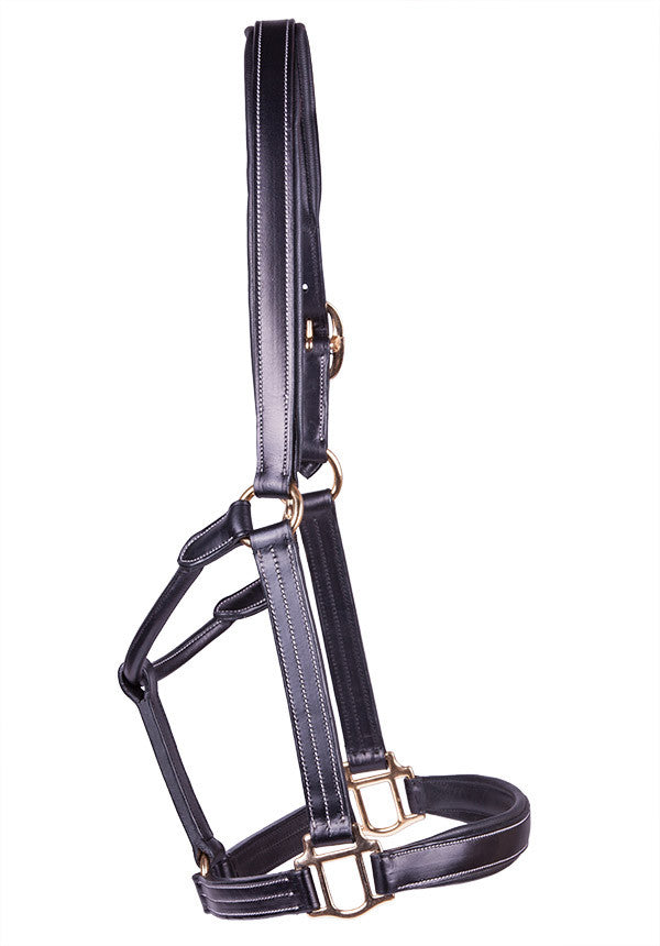 Pariani PADDED LEATHER HALTER, Cob / Black / Brass, Galleria Morusso - 1