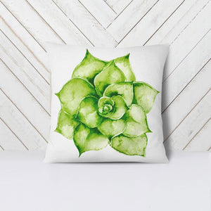 Wall and Wonder Pillow Succulent Pillow Cover in green