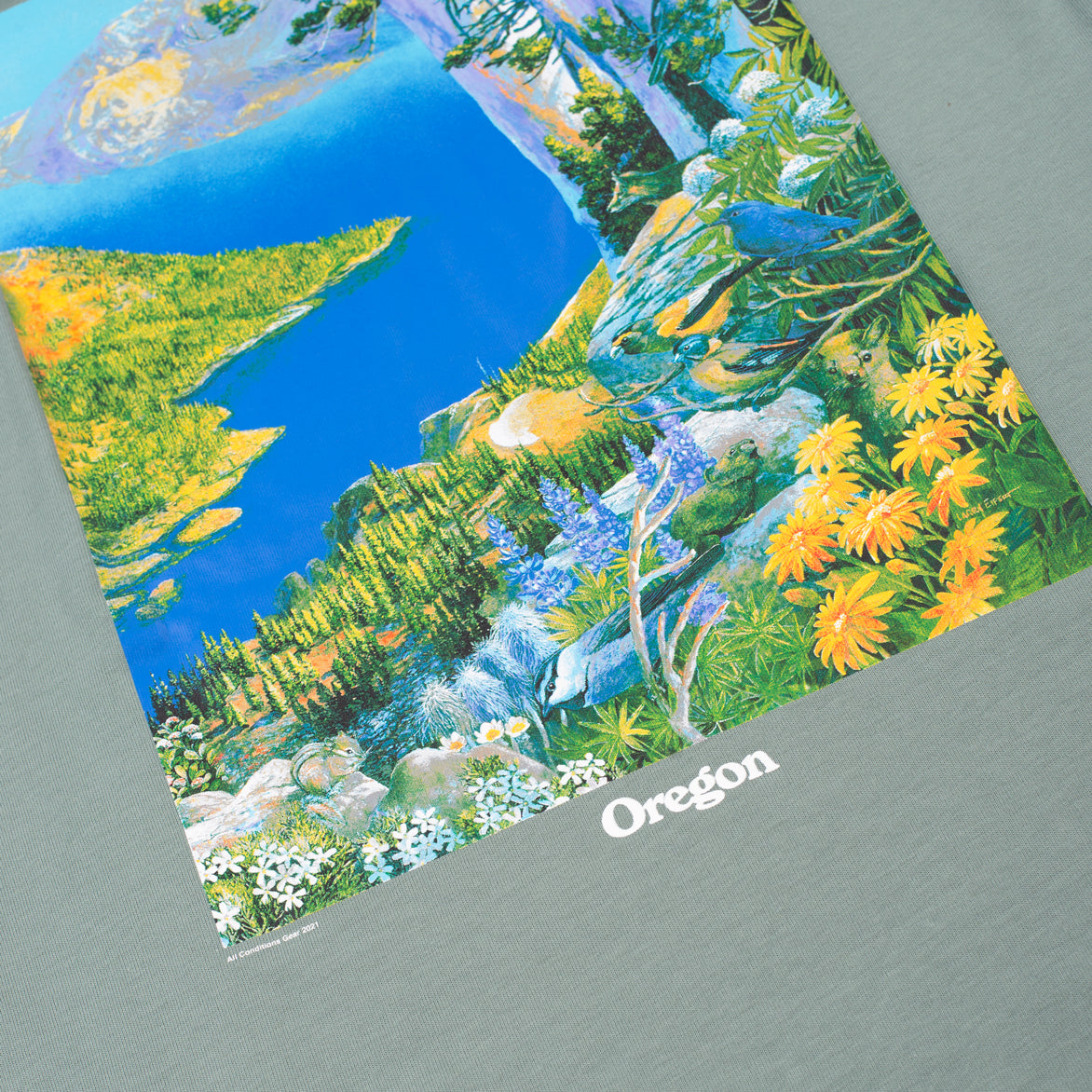 ACG CRATER LAKE TEE - CLAY GREEN