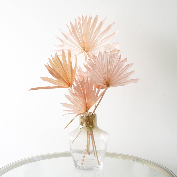 Eternity Blush Palm Fan Leaves