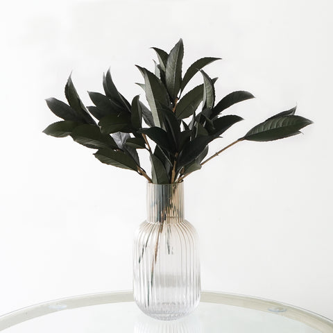 Eternity Dark Green Camellia Leaves