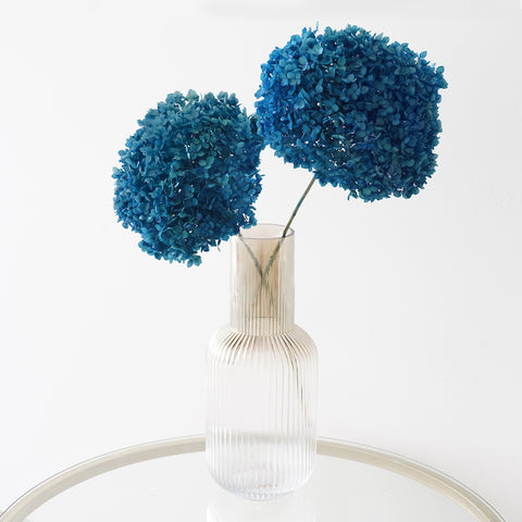 Eternity Deep Blue Hydrangea