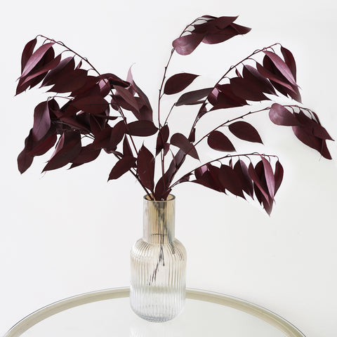 Eternity Burgundy Willow Eucalyptus Leaf