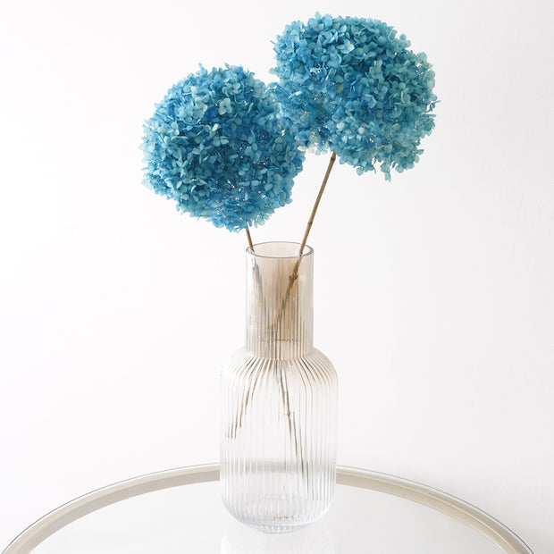 Eternity Light Blue Hydrangea