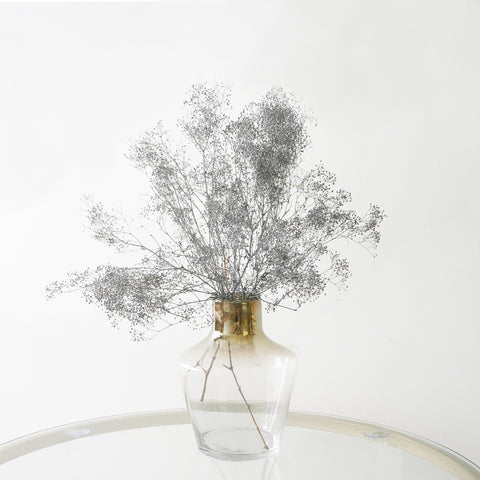 Eternity Silver Gypsophila
