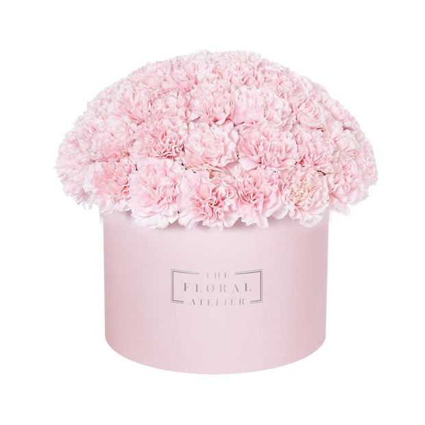 Pink Carnation Bloom Box