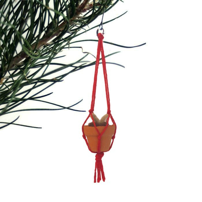 Red Miniature Felted Hanging Plant - Juniper & Scout