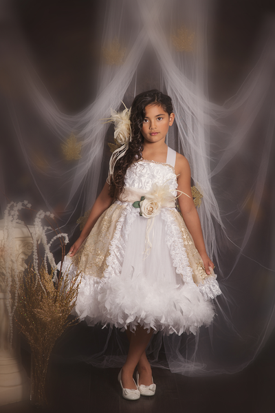 Fairy Tales Sweet Gold And White Girls Feather Dress