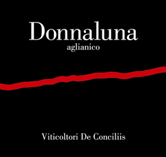 Donnaluna Aglianico 750mL