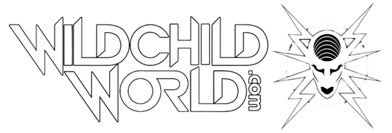 WILDCHILD WORLD DECOR SHOP