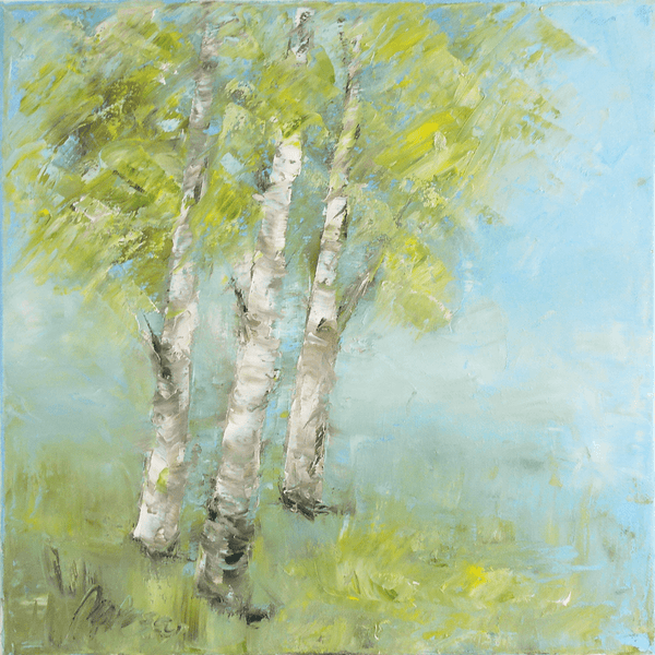 "Birch trees in Summer - oil on canvas 12"" x 12"""