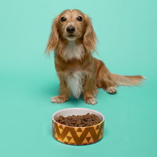 Load image into Gallery viewer, Customizable Pet Bowl