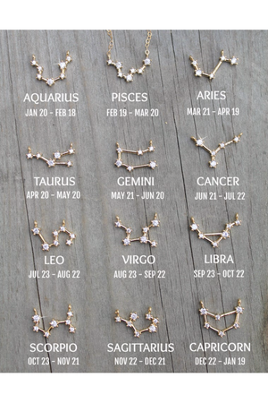 Potion Number 9 Zodiac Constellation Necklace